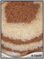 Riz a la viande hachée et au massalé.