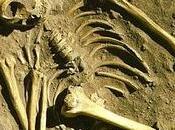 L'homme Neandertal, notre compagnon d'humanité l'intelligence dénigrée