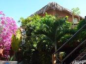 Écolodge Mancora: oasis chic responsable
