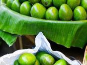 vertus mangue