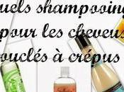 Quel shampooing choisir pour cheveux bouclés crépus