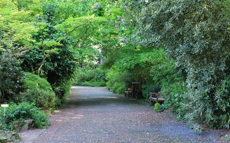Le beau jardin des plantes et botanique de caen d couvrir - Le jardin des plantes caen ...