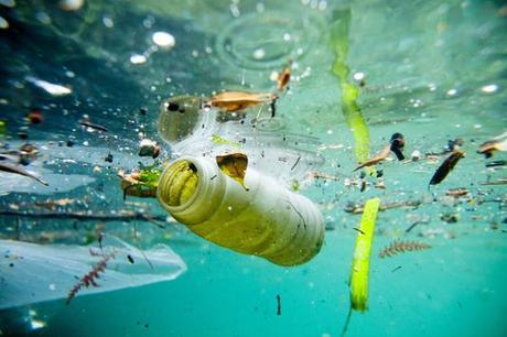 Dans les océans flottent des macrodéchets épars et surtout une myriade de microfragments, d'un diamètre inférieur à 5 millimètres.