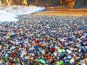 Lorsque nature fait déchets œuvres d'art