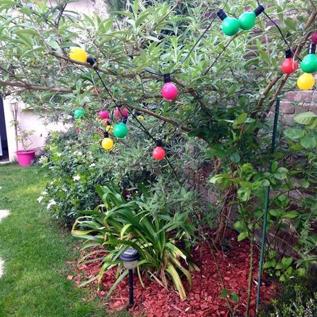 D co am nagement de mon petit jardin paperblog for Amenagement de petit jardin
