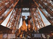 jours cheval événement sportif culturel pied Tour Eiffel
