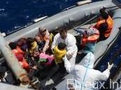 Egypte cinq migrants morts noyade