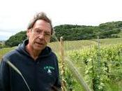 Vins naturels:« ans, nous traitait fous
