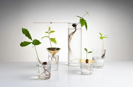 Floating-Forest-Series-by-Michael-Anastassiades-00