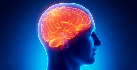 Remplacer les mots de passe par des empreintes cérébrales?
