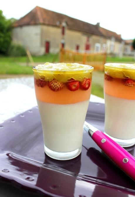 Pana cotta rhubarbe fraise des bois (3)