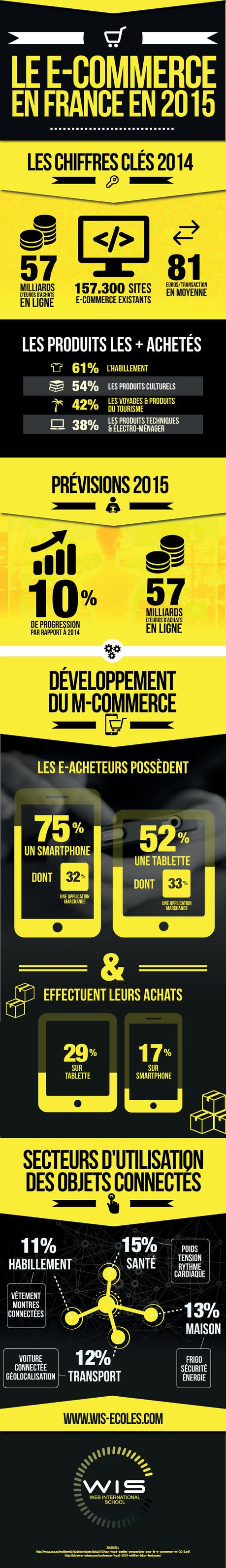 #Infographie – Le #Ecommerce en France en 2015