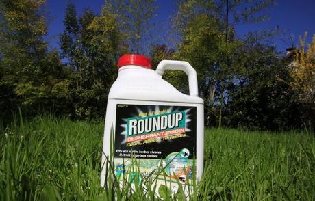 L'herbicide Roundup de Monsanto.