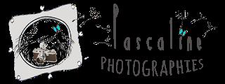 Pascaline Photographies Ƹ̵̡Ӝ̵̨̄Ʒ