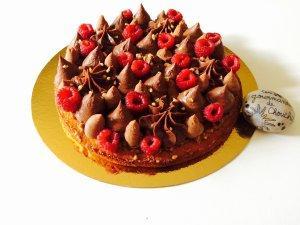 Fantastik chocolat, praliné, caramelia  et framboises