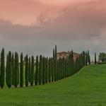 PHOTOGRAPHIE : Voyage en Toscane !