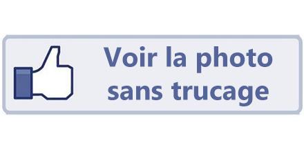 Invente ton bouton Facebook