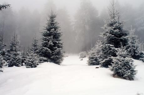 Un repas en hiver de Hubert MINGARELLI