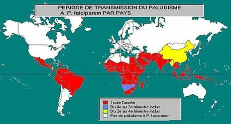 Les grands progrès dans la lutte contre le paludisme