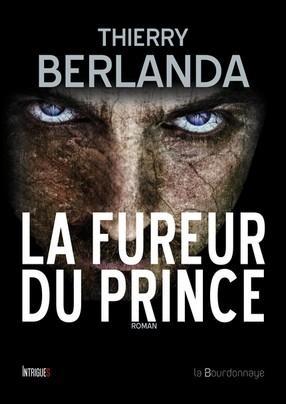Couverture La fureur du prince