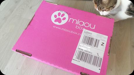 J'ai redécouvert la Miaoubox !
