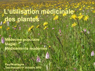 L'utilisation médicinale des plantes