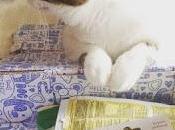 Kala découvrent Miaoubox Septembre
