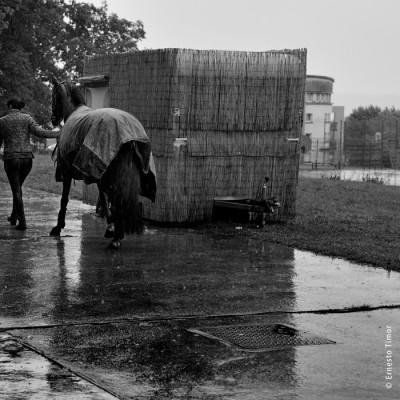Les arts plus forts que la pluie