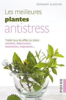 Les meilleures plantes anti-stress