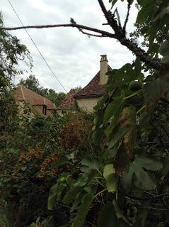 Le  dernier voyage au pays que mon père s'était choisi, la Dordogne : des nouvelles de l'automne...