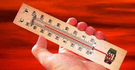 Maigrit-on davantage quand il fait chaud ?
