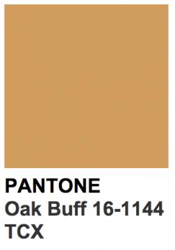 pantone marron clair