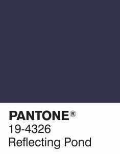 pantone bleu foncé