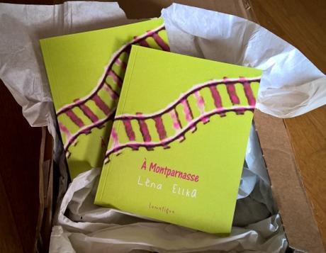{rentrée littéraire} A Montparnasse - Lena Ellka - Editions lunatique