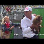 VIDÉO - La vidéo d'une association de défense des animaux fait scandale