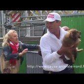 Tribunal de Grande Instance de Lille: Ouvrir une enquête sur le fonctionnement de l'association Cause Animale Nord