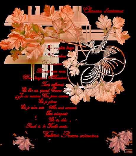 Cet automne, j'ose la renaissance à Mons. Et toi ?   Mons2015 23 septembte equinoxe automne!