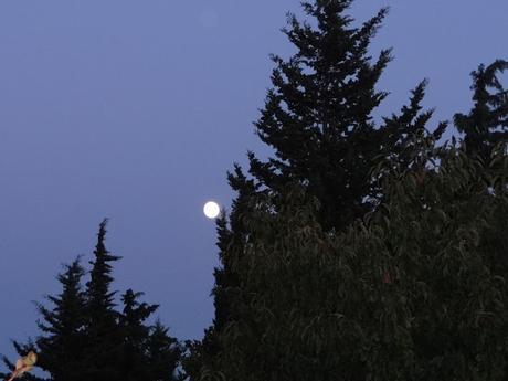 En attendant la lune rouge
