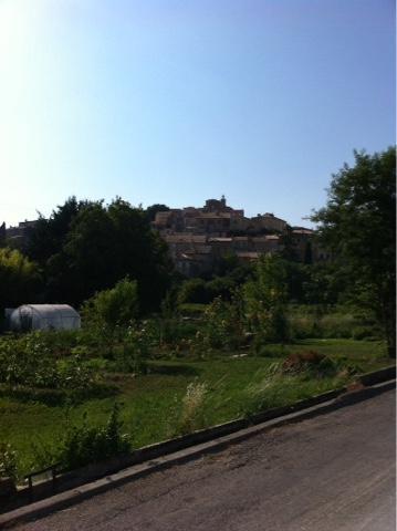 Val ensile Provence lavande