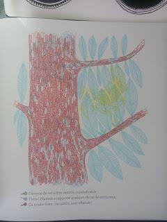 La forêt enchantée - Avec 3 loupes magiques pour découvrir l'envers du décor ♥ ♥ ♥