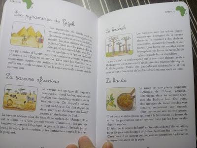 Mon coffret Montessori du monde - 77 cartes pour découvrir les continents