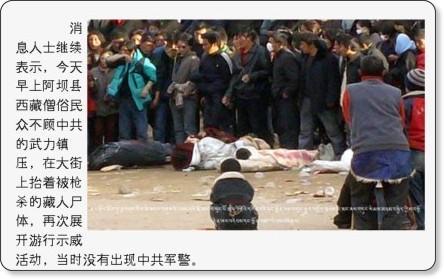 http://www.peacehall.com/news/gb/china/2008/03/200803172255.shtml