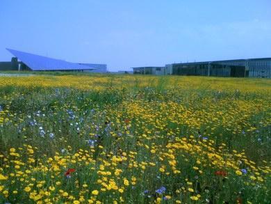 La bonne gestion des espaces verts la rochelle lire for Gestion des espaces verts