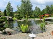 Zoom jardins japonais