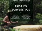 Exposition Paisajes Subversivos Marcos Avila Forero CAIRN Digne