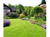 image jardin
