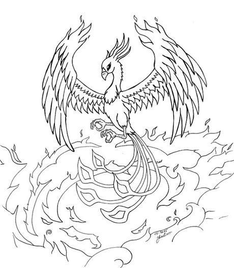 dessin de phénix  paperblog