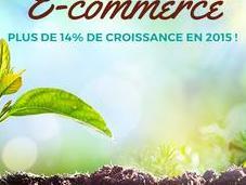 #Ecommerce plus croissance 2015