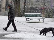 ballade Genève sous neige