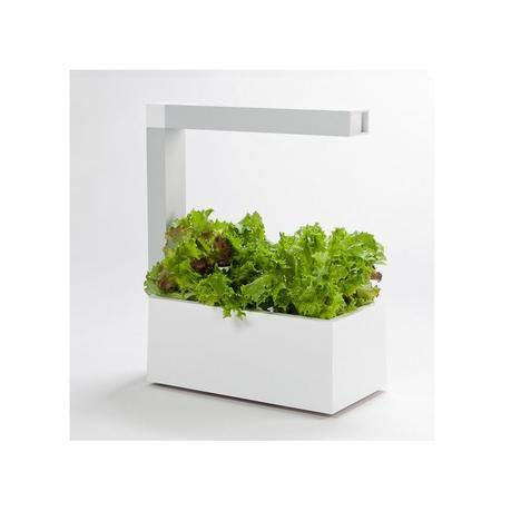 un mini potager d 39 int rieur design paperblog. Black Bedroom Furniture Sets. Home Design Ideas